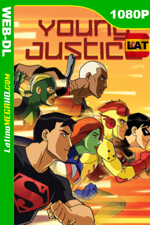 Young Justice (Serie de TV) Temporada 1 (2010) Latino HD WEB-DL 1080P ()